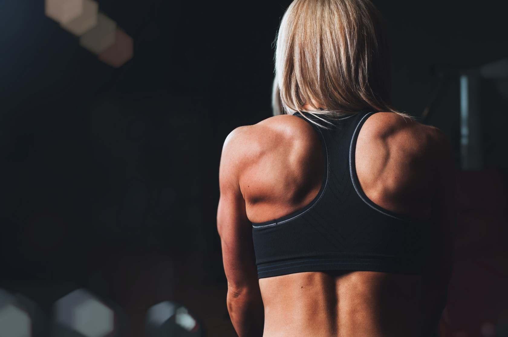 back-trainer