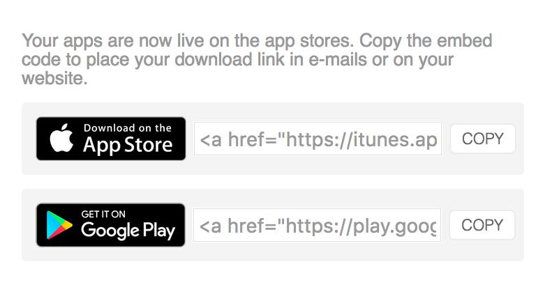 custom-app-embed-website