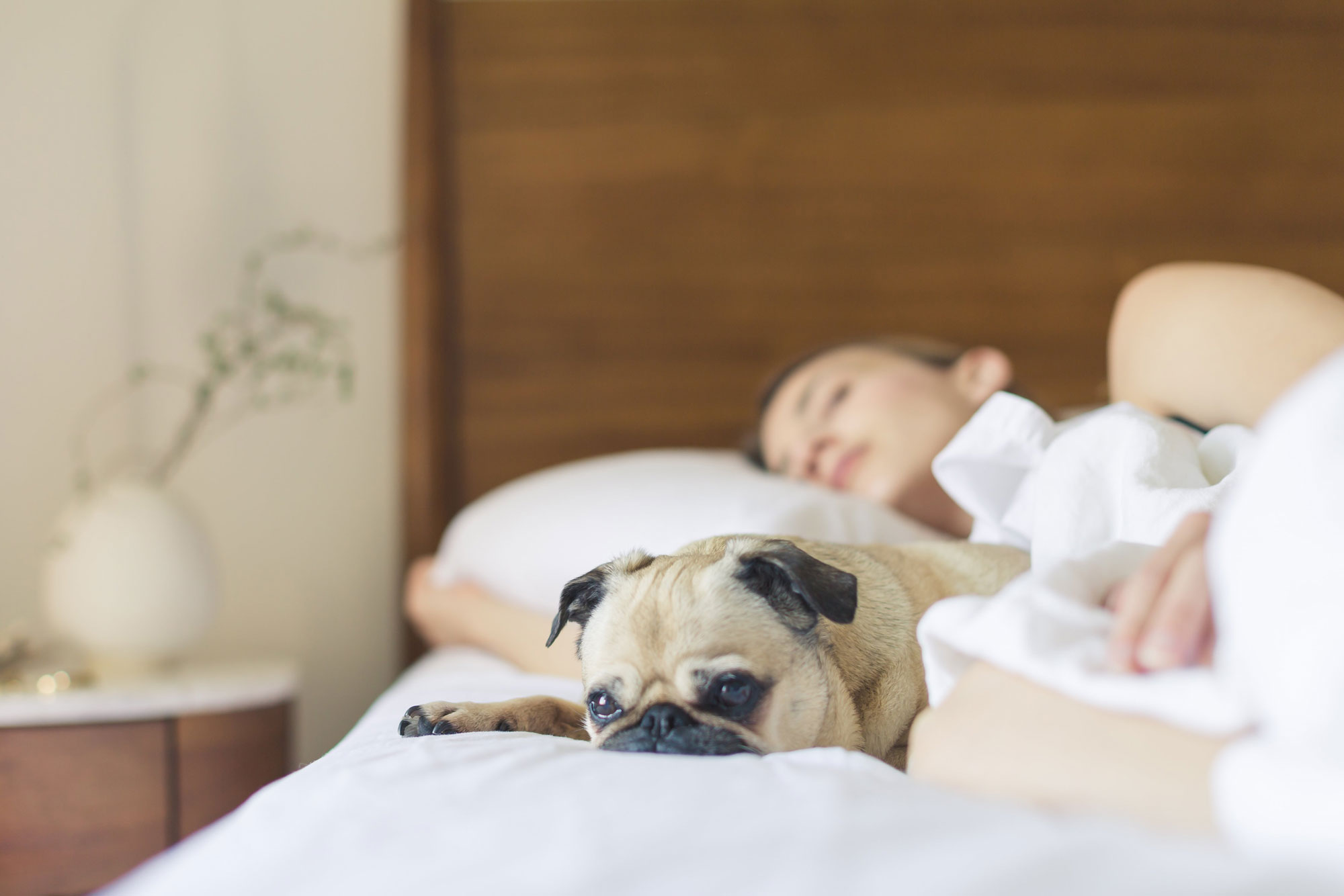 3 Tips to Share with Clients to Help Them Get a Better Night's Sleep